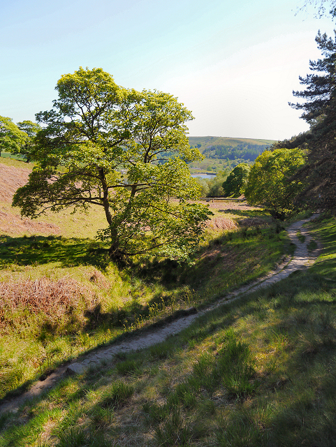 Rag Hole Clough