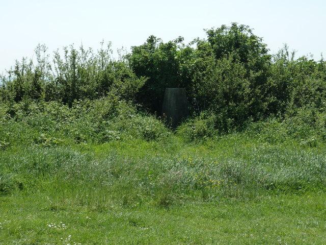 Trig point on Halnaker Hill