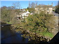 SE2062 : Nidd at Summerbridge by Derek Harper