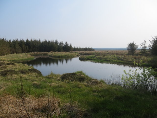 Lochan amongst the trees on Hollandmey Moss