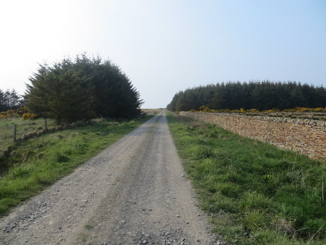 Farm track near Philips Mains