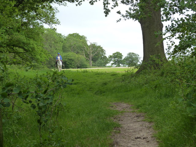 Bridle path in use