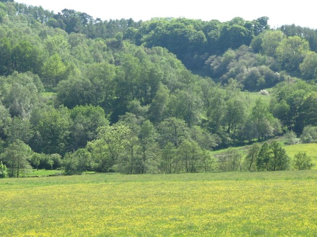 The Churnet valley west of Oakamoor