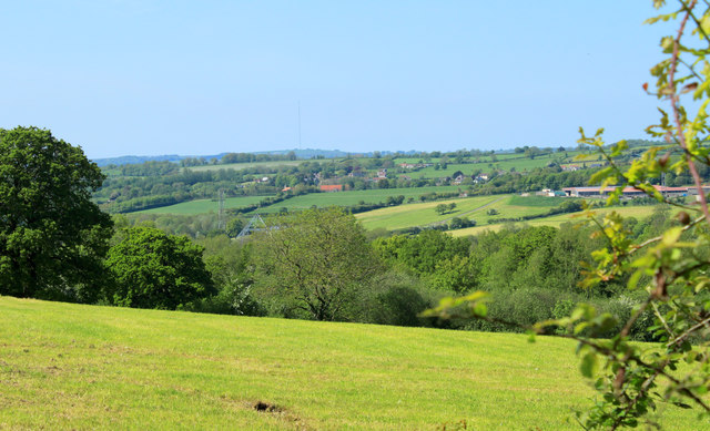 2012 : North west from Cockmill Lane