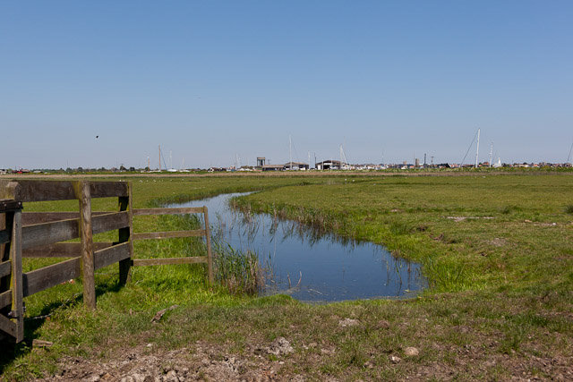 Drainage ditch on Robinson's Marshes