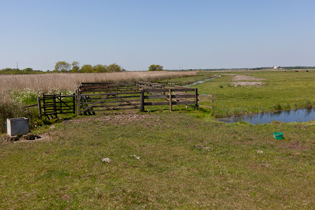 Stock Pen on Robinson's Marshes