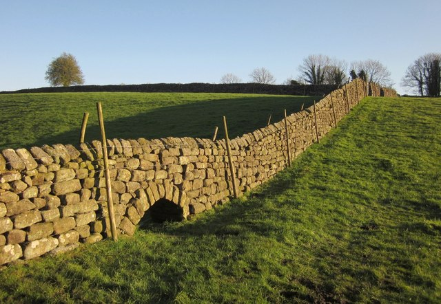 Wall near the Nidd