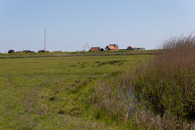 Field and ditch, Walberswick