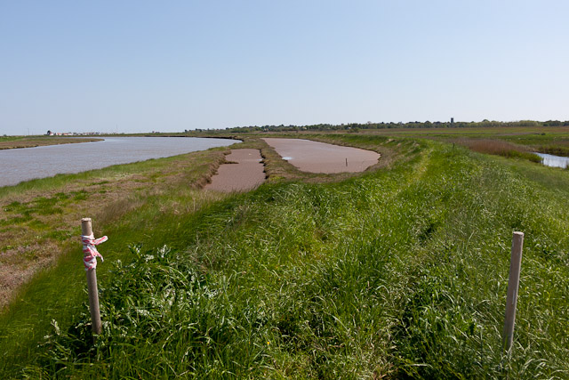 Mudflats beside River Blyth