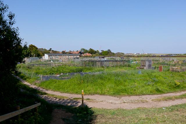 Allotment Gardens, Walberswick