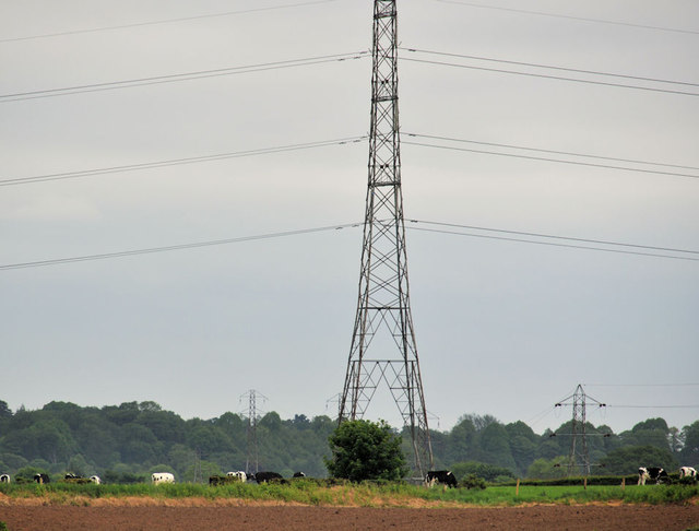 Pylon and power lines, Tullynacross near Lisburn