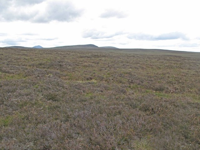 Moorland near Backlass