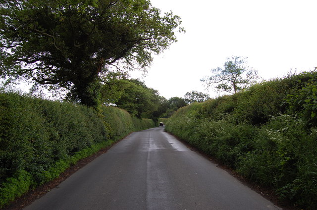 Lane near Mitchelham Priory