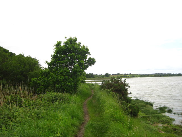 Footpath by the Deben