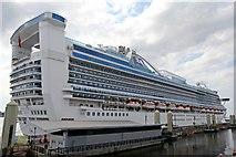 SJ3390 : Caribbean Princess, Cruise Terminal, Liverpool by El Pollock