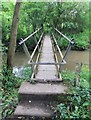 SP1765 : Footbridge over Kingswood Brook by David P Howard