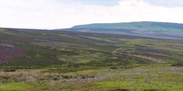 View over Bonfield Gill