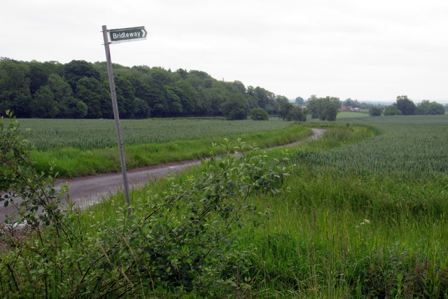 Bridleway from the Wicken road