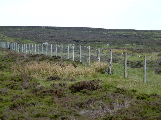Moorland fencing west of Wolfhole Crag
