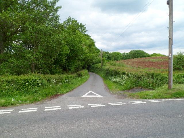 Lane to two farms north of Brecon