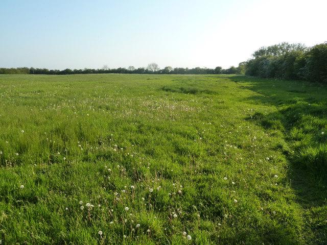 Saxby Lowlands bridleway