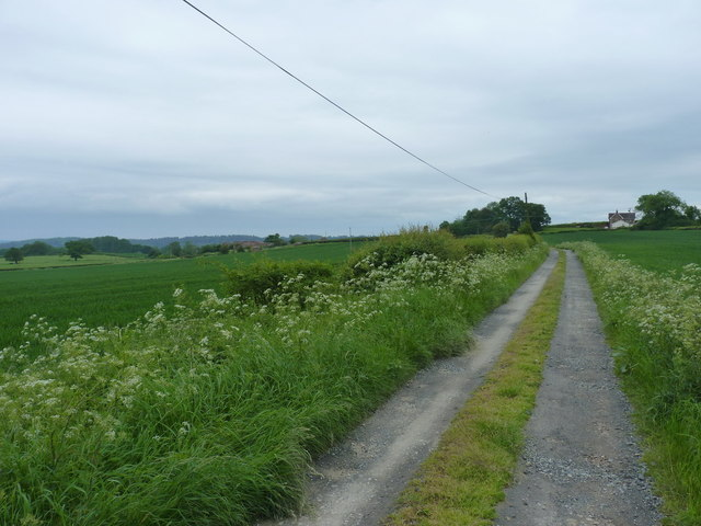 Bridleway down to the two Binnals