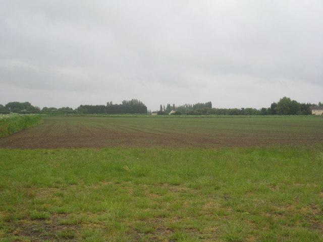 View towards Springfield Farm near Walpole Cross Keys