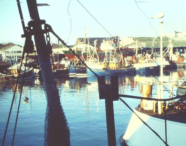 Fish Market, Aberdeen