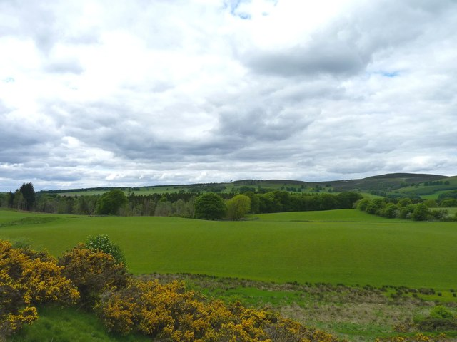 View across the woods at Bamff