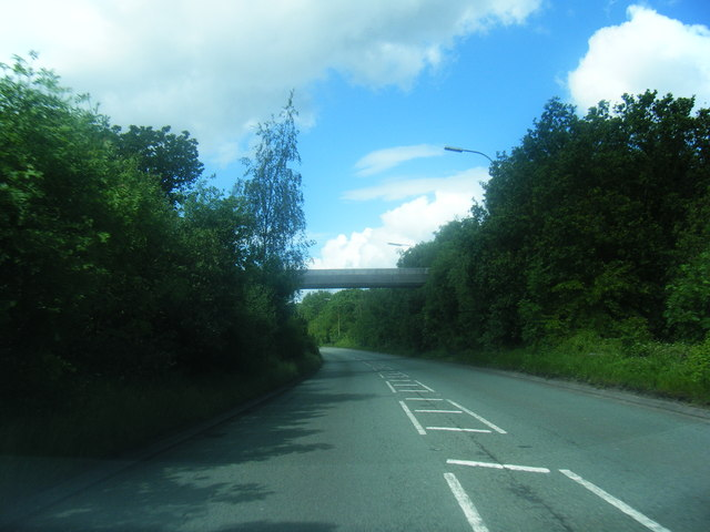Footbridge over Birchwood Way