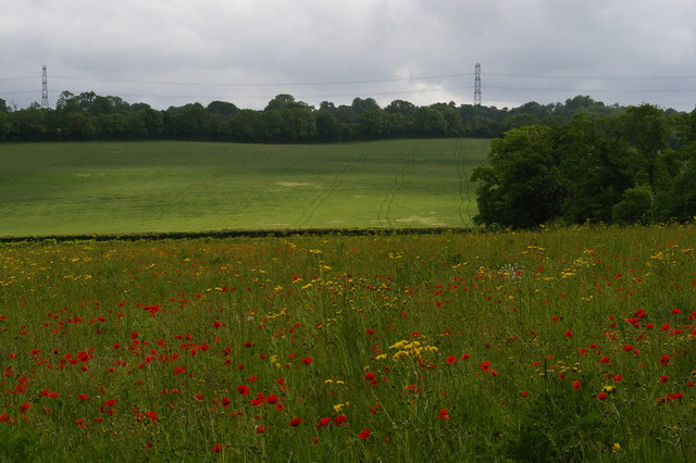 Fields south-west of Farnborough