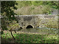 SK2165 : Over Haddon: Conksbury Bridge by Chris Downer