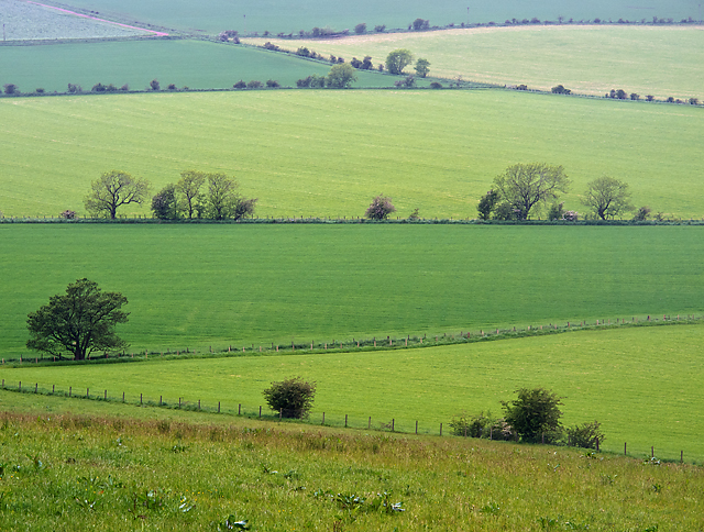 Farmland near Fleecefaulds