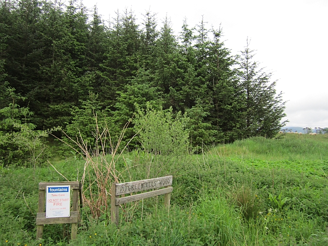 Greenhills Wood