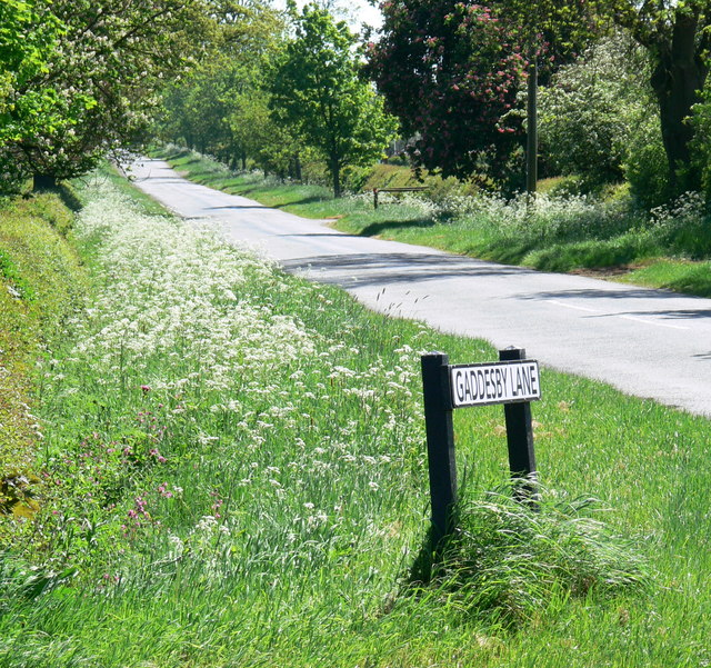 Gaddesby Lane towards Barsby