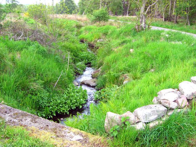 The Mony burn, downstream