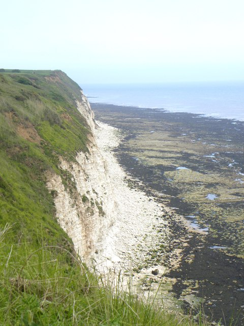 South Cliff, Flamborough