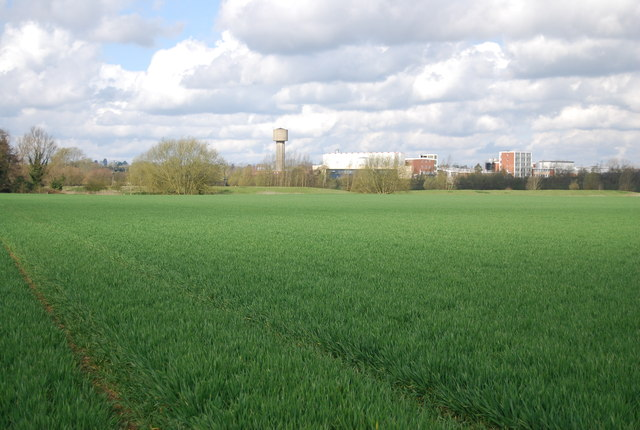 Farmland by Blackwall Rd