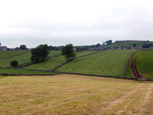 Hayfields at Litton
