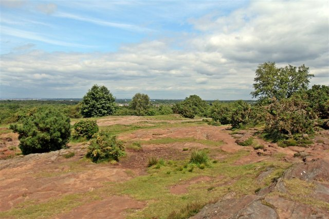Sandstone Outcrop, Thurstaston Hill
