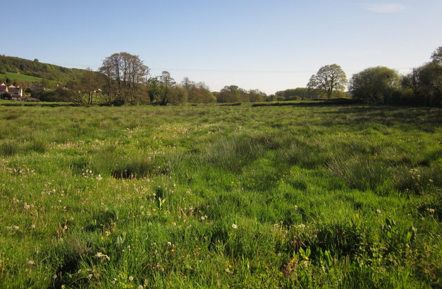 Meadow by the Otter