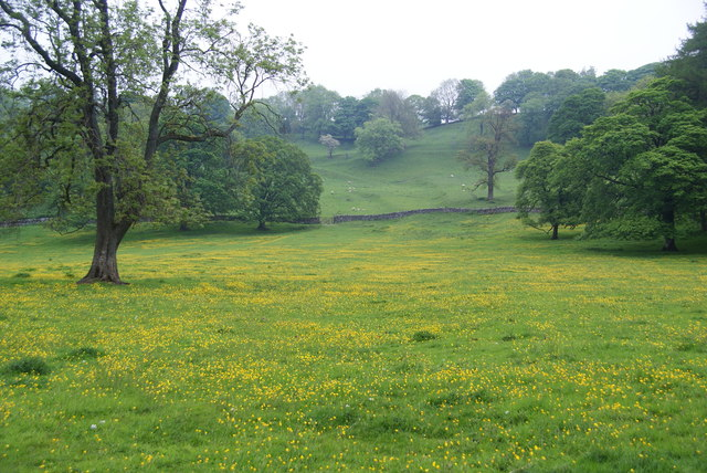 Buttercup fields below Hanlith Hall