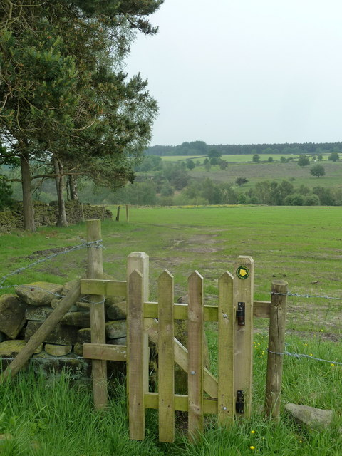 Footpath gate, fields and trees