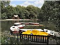 TQ2877 : Boats at Battersea Park by Paul Gillett