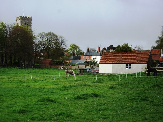 Pony paddock, Polka Road, Wells