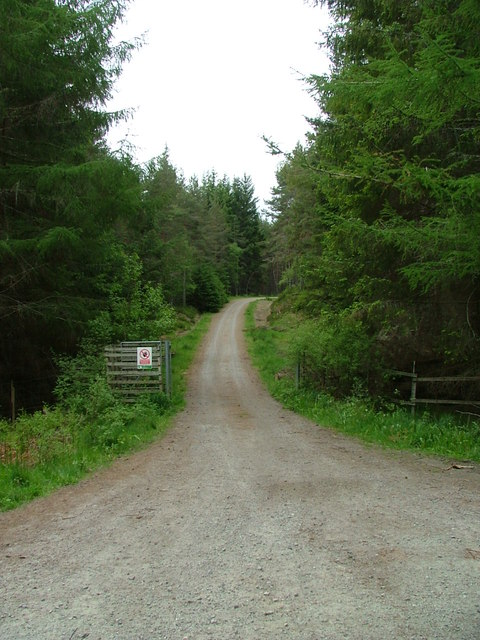 Track into Comar Wood