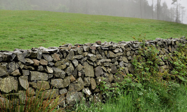 Drystone wall. Drumkeeragh near Dromara (1)
