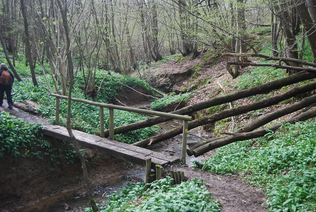Footbridge over Tilder Gill