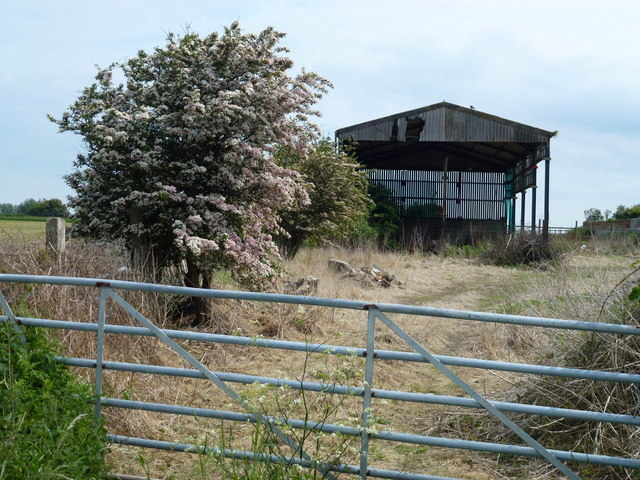 Bush and barn at Mill Farm