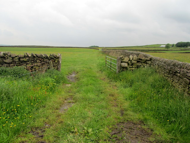 Footpath to Knarrs Hill